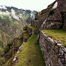 Images of Peru - Machu Picchu (Terraces 2) by Rebel Kreklow