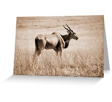 Spirit of South Africa Greeting Card