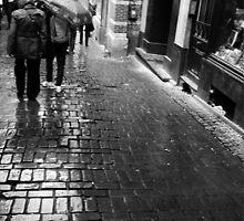 rain. cobble stones. Brussels by Nikolay Semyonov