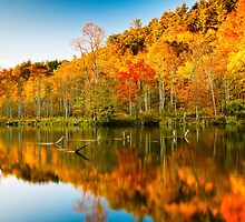 Reflections of Fall 2 by Greg Booher