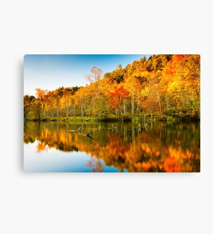 Reflections of Fall 2 Canvas Print