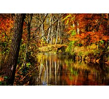 Bob's Creek Photographic Print