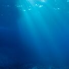 Rays of sunlight shining into sea, underwater view by Sami Sarkis