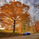 Coupe in the Fall by Rob Smith