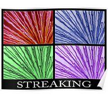 streaking 4xcolor Poster