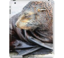 Fur seal self cuddle iPad Case/Skin