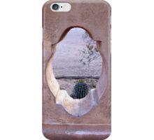 Nature Framed iPhone Case/Skin