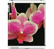 ORCHID 6 iPad Case/Skin