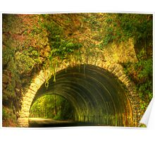 Tunnel in the Woods Poster