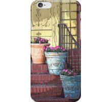 Three Flower Pots iPhone Case/Skin