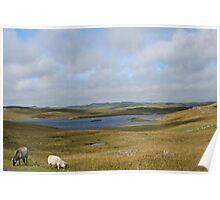Shetland moorland Poster