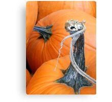 Pumpkin Twist Canvas Print