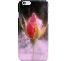 rosebud in the snow 4 iPhone Case/Skin