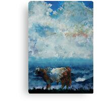 Belted Galloway Cow Stormy Cloudy Sky Canvas Print