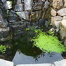 An Irish Water Feature At The Red Door Restaurant by Fara