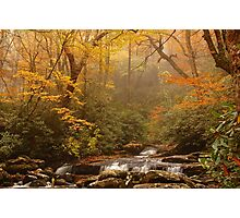 Smoky Mountain color change Photographic Print