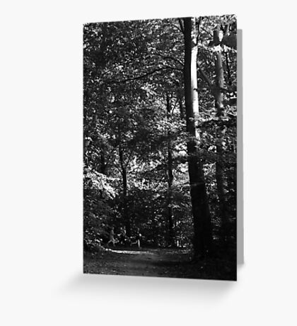 Running through the trees ... Greeting Card