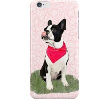 Nessie the boston iPhone Case/Skin