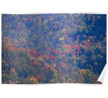 Green Mountains National Forest - Vermont Poster