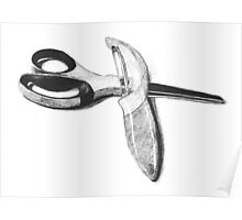 Scissors and Peeler - Graphite medium Poster