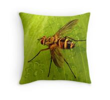 Louie the Fly Throw Pillow