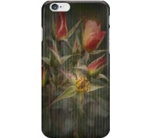 Rust 'n Roses No 7 ~ iPhone Case iPhone Case/Skin