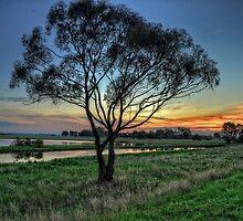 Sunset @ Eynesbury by Krishna Gopalakrishna