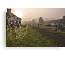 Jewels of the morning mist Canvas Print