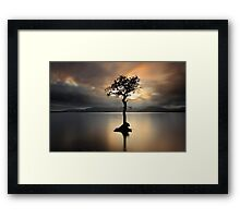 Lone tree on Loch Lomond Framed Print