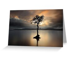 Lone tree on Loch Lomond Greeting Card