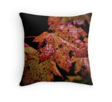 True Colors Of Nature Throw Pillow