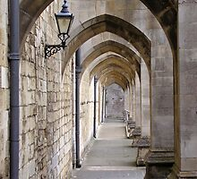 Arcade of flying buttresses, Winchester Cathedral, for iPhone by Philip Mitchell