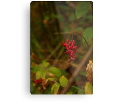 Wild Berries in Forest Metal Print