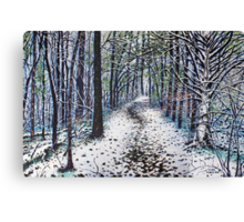 'Soft Whispers & Quiet Moments' Canvas Print