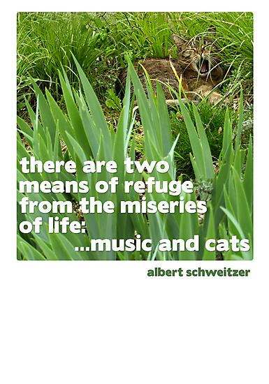 Cat lovers Postcard by anjafreak