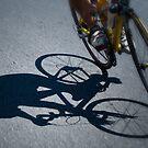 Chasing Shadows by Alan McMorris
