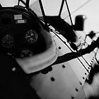 Boeing Stearman at Lake Havasu by raceman