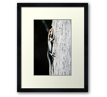 Hang Tough Framed Print