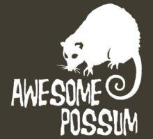 Awesome Possum by gleekgirl