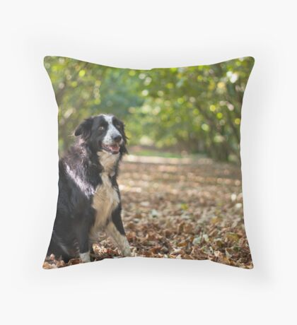 On a bed of leaves Throw Pillow