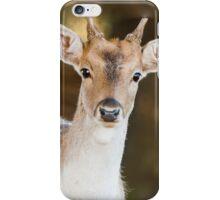 Deer I Phone Case. iPhone Case/Skin