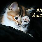 Ah Shucks by Angie O'Connor