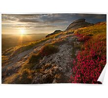 Granite, pink heather and the moor Poster