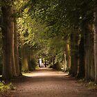 Drêve Middelheim - Antwerp - Belgium by Gilberte