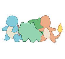 Choose a Pokemon ! by dusterherz