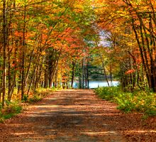 Take Me To The River by Monica M. Scanlan