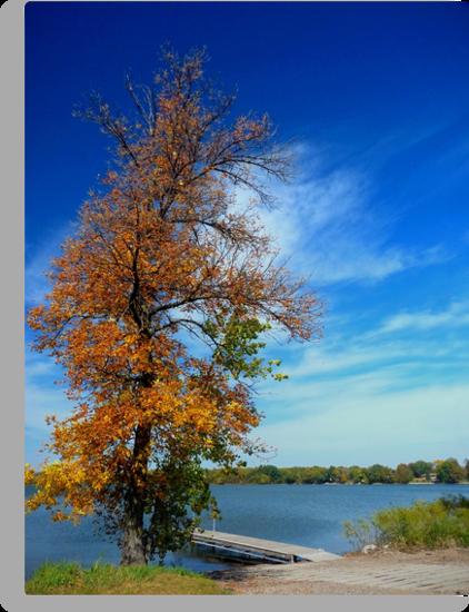 Autumn at Deer Lake by Lucinda Walter