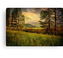 The Overlook Canvas Print