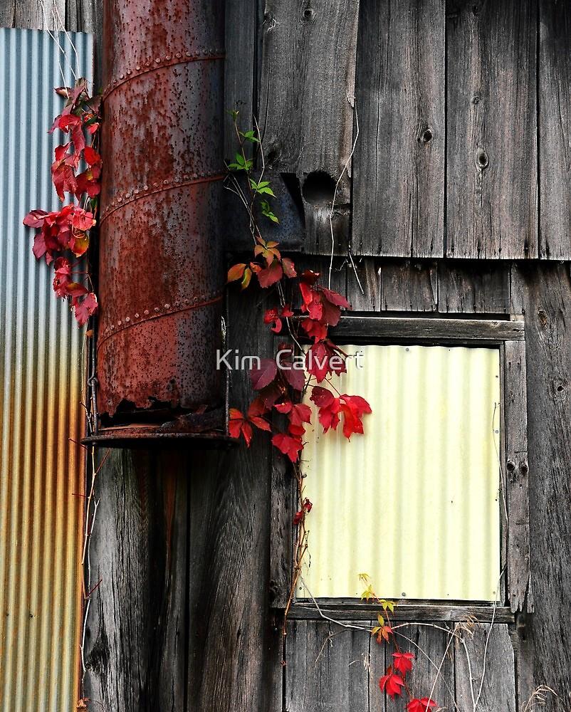 Autumn Barn  by Kim  Calvert
