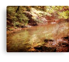 Gentle Rush Canvas Print